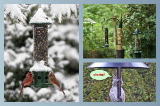Squirrel Proof Feeders and Systems!